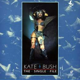 The Single File (LASERDISC)